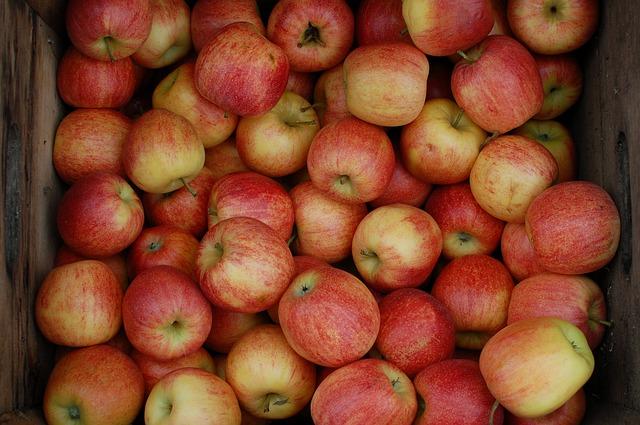 apples-379871_640
