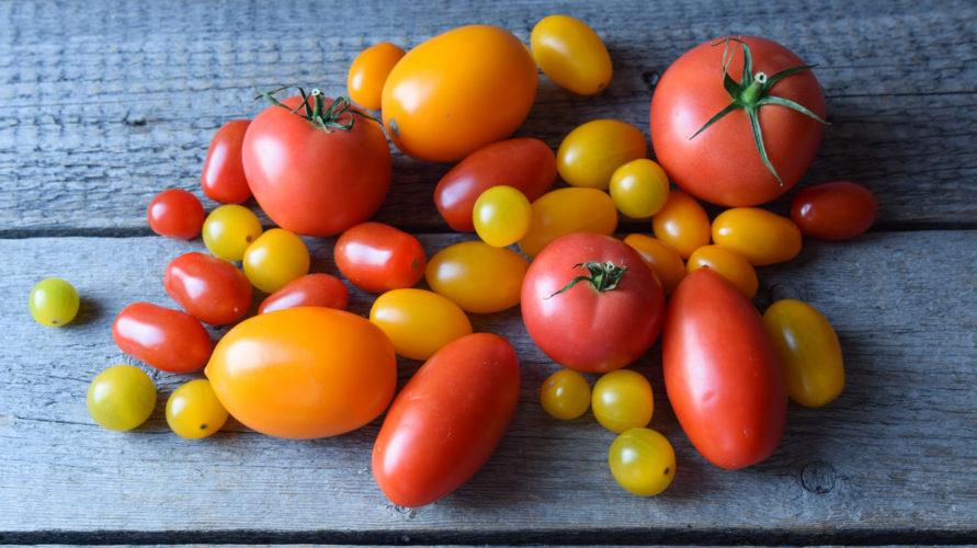 Pomidor i ogórek – łączyć czy nie łączyć?