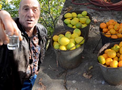 gruzja-mandarynki-czacza-bimber