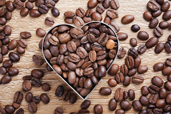 gatunki kawy arabica i robusta
