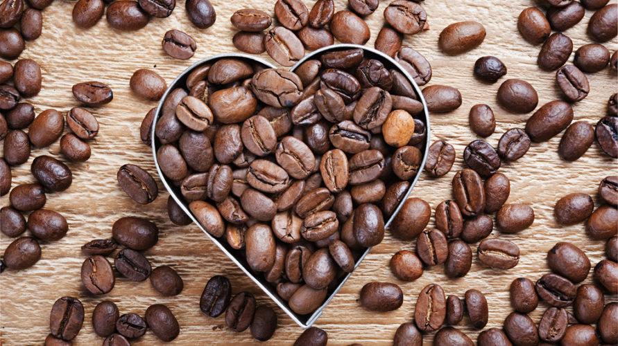 Gatunki kawy, czyli arabika i robusta